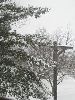 snowverkill, indeed